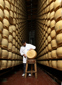 Production and sale of Parmigiano Reggiano DOP from 12 months to more than 36 months old